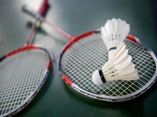 Badminton История возникновения и развития тенниса