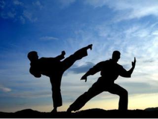 Теннис и боевые искусства вместе Теннис и боевые искусства вместе?